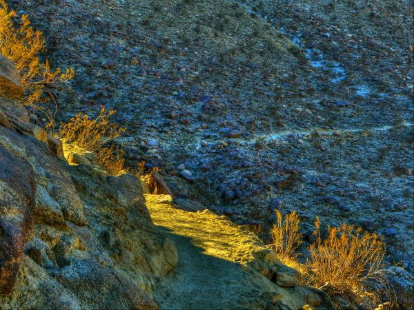 trail-light